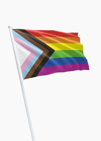 Progress Flag