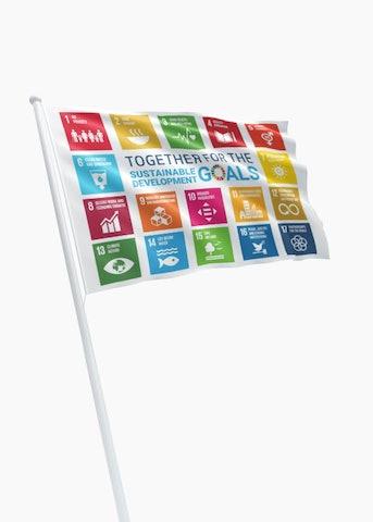SDG-vlag ECO