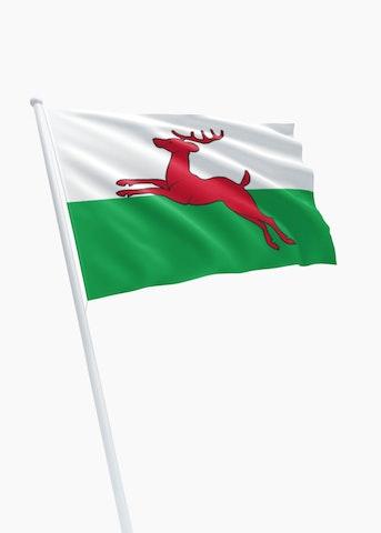 Vlag gemeente Smallingerland