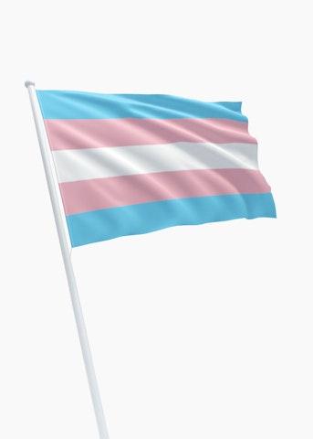 Transgender vlag