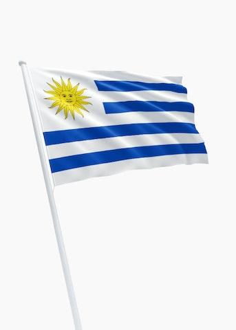 Uruguayaanse vlag huren