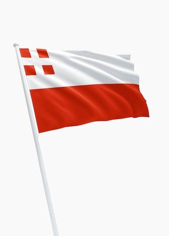 Utrechtse vlag