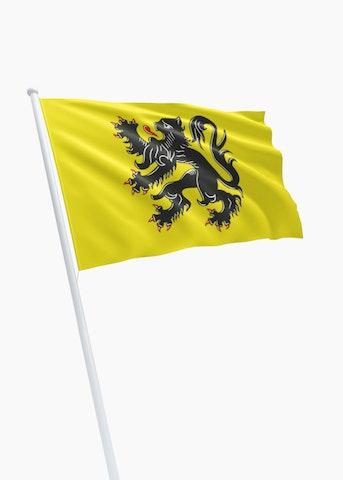 Vlag Vlaams Gewest