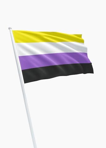 Non-Binary Pride vlag