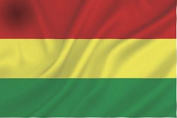 Carnaval vlag