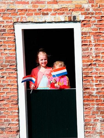 Nederlandse zwaaivlag, set van 50 stuks, papier